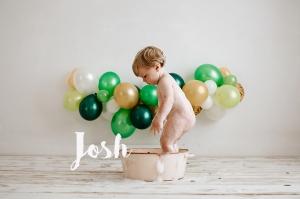 JOSH 6